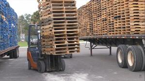 forklift- pallet audit